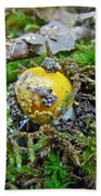 Yellow Patches Baby Mushroom - Amanita Muscaria Beach Towel