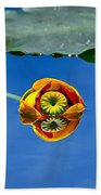 Yellow Pond Lily Beach Towel