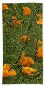 Yellow Poppies Dsc07460 Beach Towel