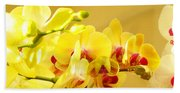 Yellow Red Orchid Flowers Art Prints Orchids Beach Towel