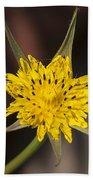 Yellow Star Flower Beach Towel