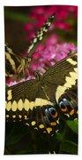Yellow Swallowtail Butterflies  Beach Towel