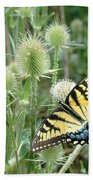 Yellow Swallowtail Butterfly Beach Towel