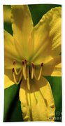 Yellow Too Lily Flower Art Beach Towel