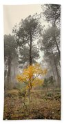 Yellow Tree In The Foggy Forest Beach Towel