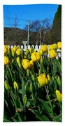Yellow Tulips Before White Picket Fence Beach Towel