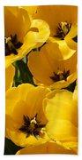 Golden Tulips In Full Bloom Beach Towel