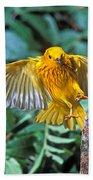 Yellow Warbler Dendroica Petechia Beach Towel