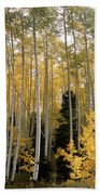 Young Aspens Beach Towel