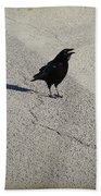 Young Cawing Crow Beach Towel