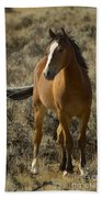 Young Wild Mare   #0307 Beach Towel