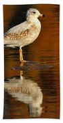 Youthful Reflections Beach Towel by Tony Beck