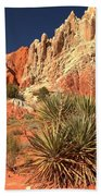 Yucca Badlands And Colors Beach Towel