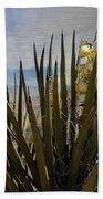 Yucca Blooms Beach Towel
