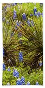 Yucca With Bonnets Beach Towel