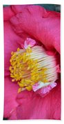 Yuletide Camelia Beach Towel