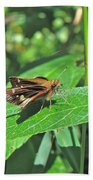 Zabulon Skipper Butterfly - Poanes Zabulon - Female Beach Towel