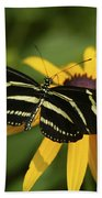 Zebra Butterfly Beach Towel
