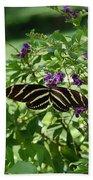 Zebra Longwing Butterfly On Flower Beach Towel