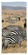 Zebra Migration Maasai Mara Kenya Beach Towel