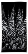 Zebra Succulent Beach Towel