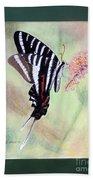 Zebra Swallowtail Butterfly By George Wood Beach Sheet