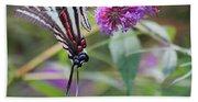 Zebra Swallowtail Butterfly On Butterfly Bush  Beach Towel