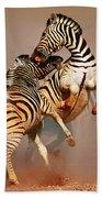 Zebras Fighting Beach Towel by Johan Swanepoel