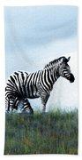 Zebras Beach Towel