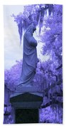 Ziba King Memorial Statue Side View Florida Usa Near Infrared Beach Towel