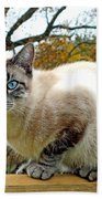 Zing The Cat In The Fall Beach Towel