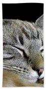 Zing The Cat Sleeping Beach Towel