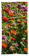 Zinna Variety Beach Towel