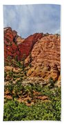 Zion National Park In Summer Beach Towel