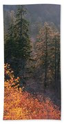 Great Smoky Mountains Morning Beach Towel