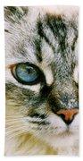 Pretty Blue Eyes--mia Beach Towel