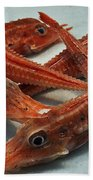 Red Cherry Shrimp In The Market Beach Towel