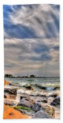 001 In Harmony With Nature Series Beach Towel