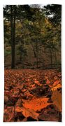 0013 Letchworth State Park Series Beach Towel
