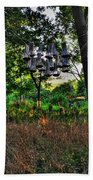 002 Bat Homes Beach Towel