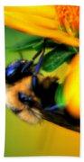 002 Sleeping Bee Series Beach Towel