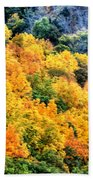 0027 Letchworth State Park Series   Beach Towel
