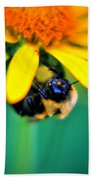 003 Sleeping Bee Series Beach Towel