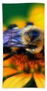 005 Sleeping Bee Series Beach Towel