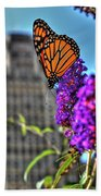 008 Making Things New Via The Butterfly Series Beach Towel