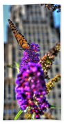 009 Making Things New Via The Butterfly Series Beach Towel