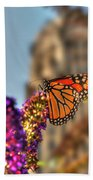 010 Making Things New Via The Butterfly Series Beach Towel