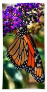 011 Making Things New Via The Butterfly Series Beach Towel