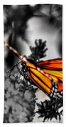 014 Making Things New Via The Butterfly Series Beach Towel