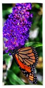 015 Making Things New Via The Butterfly Series Beach Towel